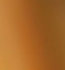6623 - Inka Gold (Alt Gold)
