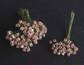 Roosbud roze-ivoor