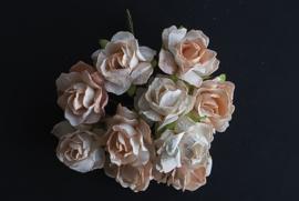 Wilde roze, peach, 2,5 cm 5 stuks