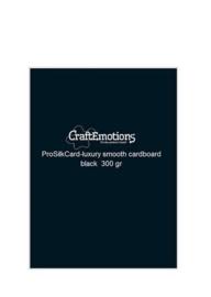 CraftEmotions ProSilkCard - luxe glad karton zwart 50 vl A4 - 300 gr