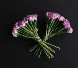 SF-1 tweekleurig lila 1,5 cm 10 st.
