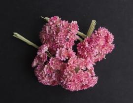 Gipskruid  tweekleurig roze