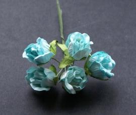 Wild rosebud