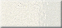 WHITE EMBOSSING POWDER » EP100