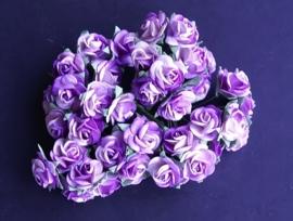 Roos Lila/Wit 2 cm 10 stuks