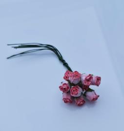 Hip roos tweekleurig rose 10 stuks