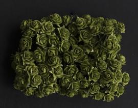 Rose SH mos-groen