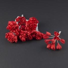 Gypsophila  rood