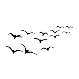 Birds LAV097
