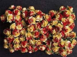 Roosjes X rood/geel