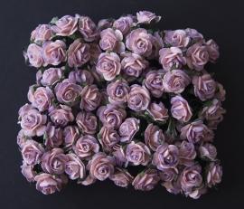 Roos K plum-roze