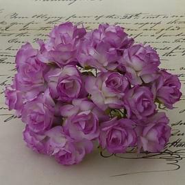 Wilde roos paars/wit  2,5 cm 5 stuks