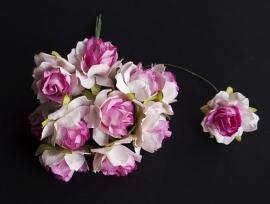 Wilde roos tweekleurig roze A 2,5 cm 5 stuks