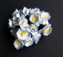Cherry azuur blauw/wit