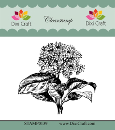Dixi Craft Botanical Collection 5 Clear Stamp (STAMP0139)