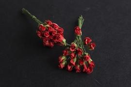 Roosbud rood