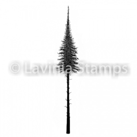Fairy Fir Tree (small) LAV489s