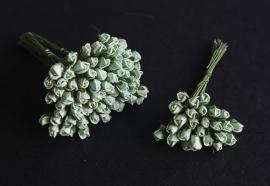 Roosbud mint
