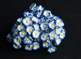 Mini Sweetheart Blossoms blauw/wit
