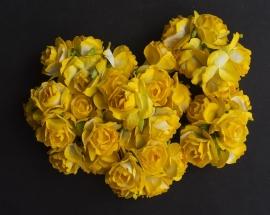 Roos 2 cm Geel