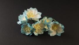 Lotus Turquoise/wit