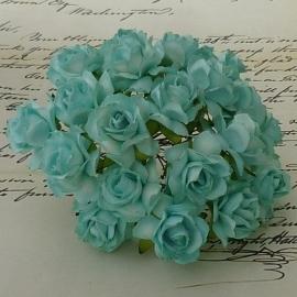 Wilde roosjes aqua 2,5 cm 5 stuks