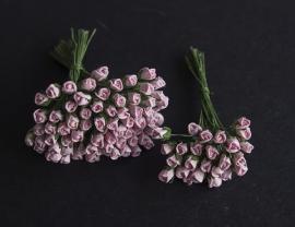 Roosbud roze
