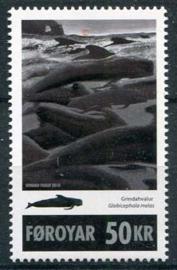 Faroer, michel 695, xx