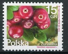 Polen, 16/54, xx