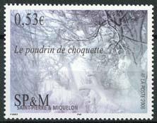 St.Pierre, michel 950, xx