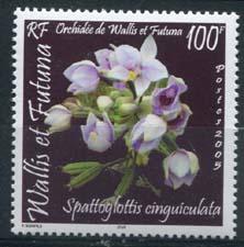 Wallis, michel 918, xx