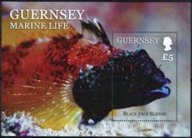 Guernsey, michel blok 63, xx