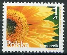 Polen, bloem, 2015, xx
