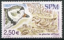 St.Pierre, michel 944, xx
