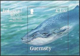 Guernsey, michel blok 52, xx