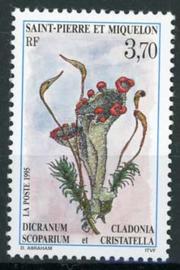 St.Pierre, michel 689, xx
