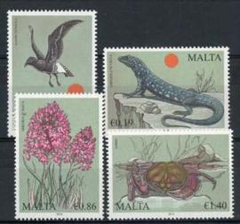Malta, michel 1646/49, xx