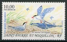 St.Pierre, michel 692, xx
