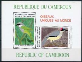 Cameroun, michel blok 30, xx