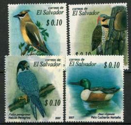 Salvador, michel 2497/00, xx