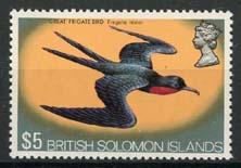 Solomon, michel 240, xx