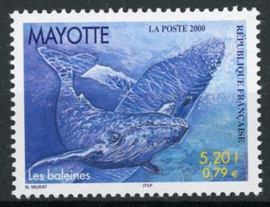 Mayotte , michel 80, xx