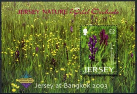Jersey, michel blok 38 I, xx