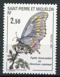 St.Pierre, michel 608, xx