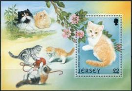 Jersey, michel blok 34, xx
