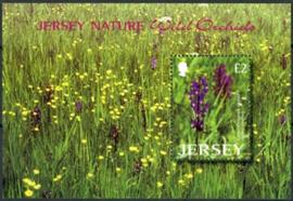 Jersey, michel blok 37, xx