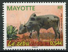 Mayotte, michel 208, xx