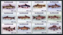 Suriname Rep., 17/05, xx