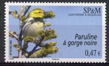 St.Pierre, michel 1008
