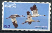 Pakistan, michel 593, xx